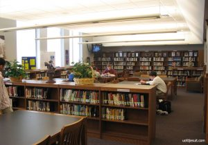 Noisy Libraries Embrace Blabbermouth Bias In Modern Education - Extra Evidence